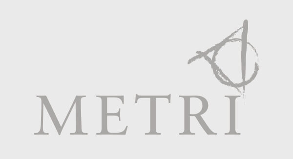 logo METRI group